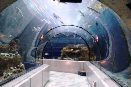 how to get to quebec aquarium